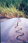 Змеиный камень. (фото - http://www.spero.org.pe/huacaculebra.htm )