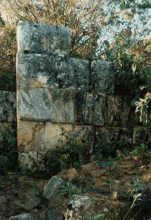 Рис.7 Остатки стен комплекса. (фото - http://algarrobopiura.blogspot.ru/2012/01/aypate.html by Nora María)