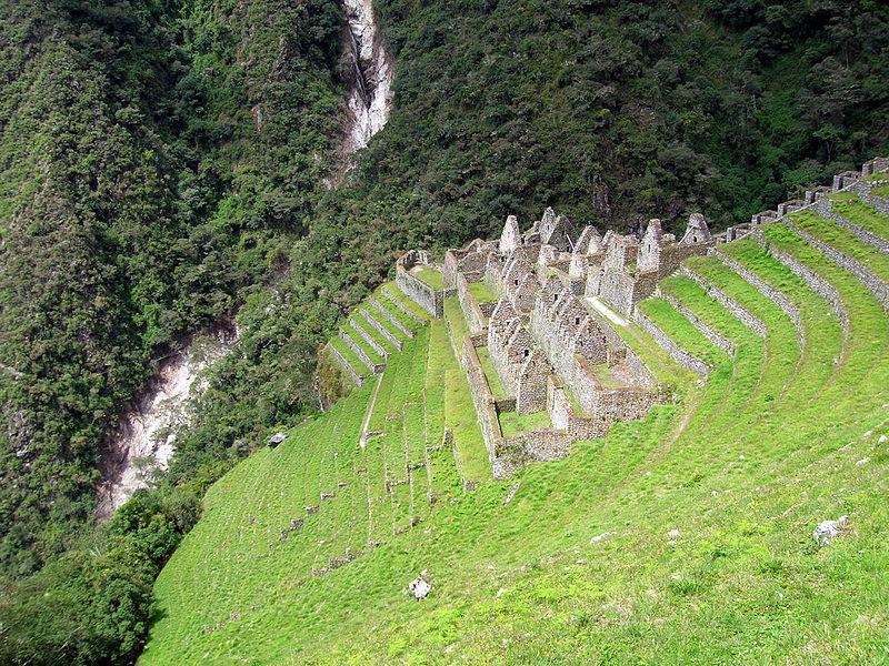 Рис.3 Винай Вайна (фото - http://commons.wikimedia.org/wiki/File:Peru_Wi%C3%B1ay_Wayna.jpg?uselang=ru автор -  Matt Austin)